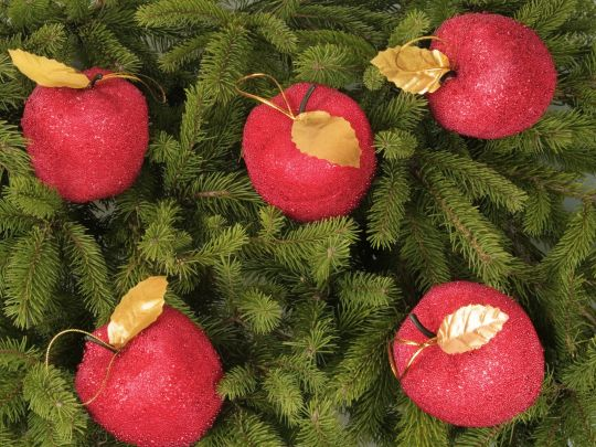 Мастер-класс «Рождественские яблочки»